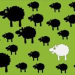 3 schwarze Schafe im Franchising?
