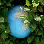Nachhaltigkeit in Franchise-Unternehmen war Chat-Thema