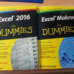 2016-0218-ExcelDummies_500p